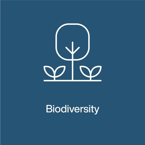 Pillar 5- Biodiversity